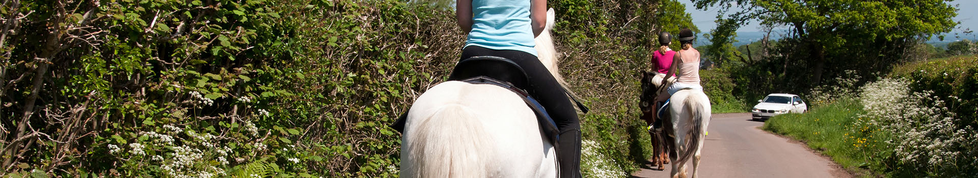 Horse riding injury claims